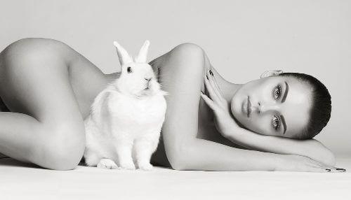 Kosmetik ohne Tierversuche