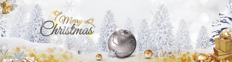 Slider - Weihnachtsaktionen